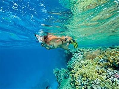 Overnight Tour in Sataya Dolphin Reef from Marsa Alam
